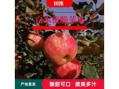 陕西白水蜜脆苹果水果礼盒