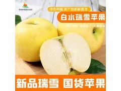 陕西白水苹果新品种国货瑞雪苹果礼盒